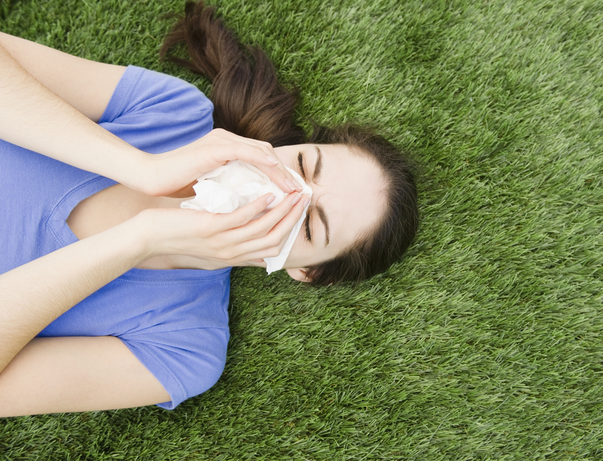 For those with grass allergy  a lush lawn can be the bane of summer June Grass Allergy