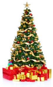 bigstock-Christmas-Tree-3942104