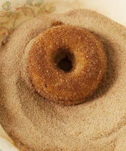 Cinnamon Sugar Donu