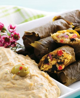 Grape leaves with Quinoa and Hummus crop