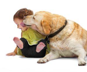 Licking_dog_lic#E2AE