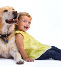 Allegy Living - Horizontal - dog and child - lab