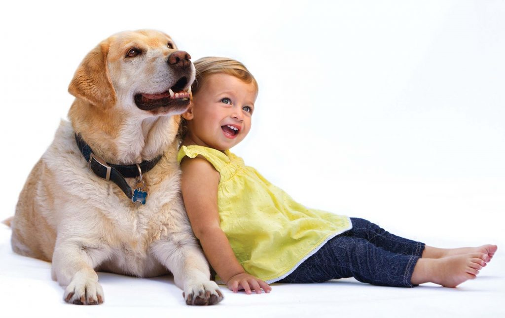 Child S Best Friend The Dog Unleashed As The Surprising
