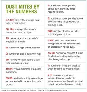 Defeat Dust Mites