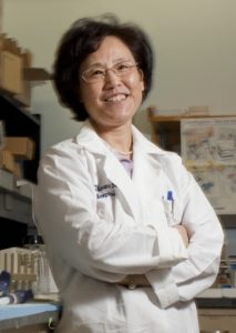 Dr. Xiu-Min Li of Mount Sinai Medical Center at her lab in New York, on April 20, 2011. Li has been studying Chinese herbal therapy for food allergies and eczema. (Robert Caplin/The New York Times)