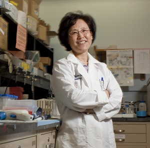 Dr. Xiu-Min Li of Mount Sinai Medical Center at her lab in New York.