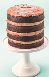 chocoalte layer cake crop