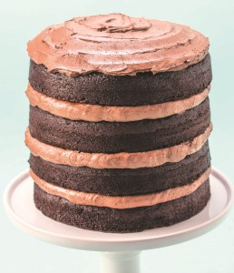 chocoalte layer cake crop