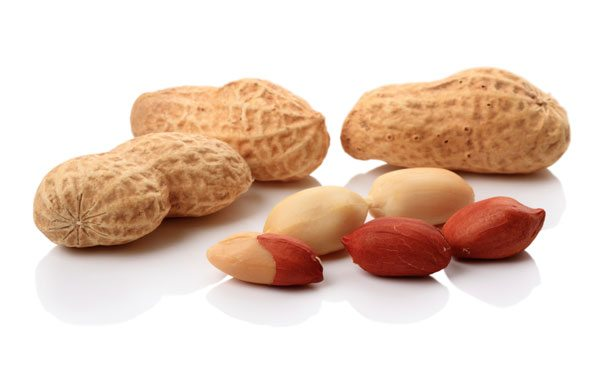 Reality Check: The Facts Beyond the Hype over Peanut Allergy and Probiotics