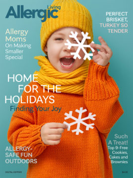 Holiday e-Magazine Cover